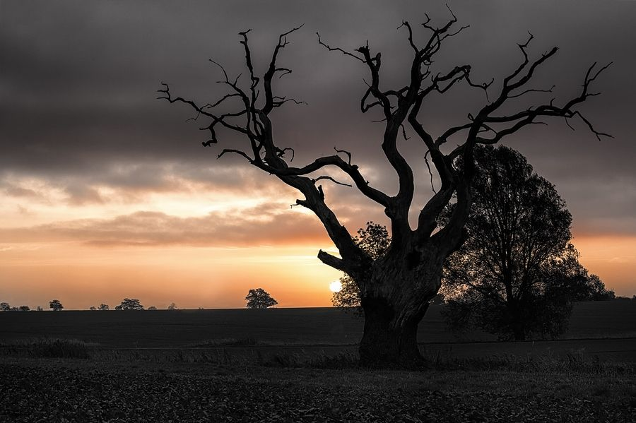 Sunrise by Paul Manning on 500px