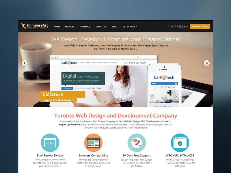 Immenseart Is A Resourceful Web Design Company In Chandigarh India That Offers A Full Range O Web Development Design Professional Web Design Web Design Agency