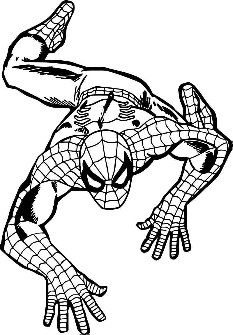 Climb Spider Man Coloring Page Spiderman Coloring Pages Coloring For Kids