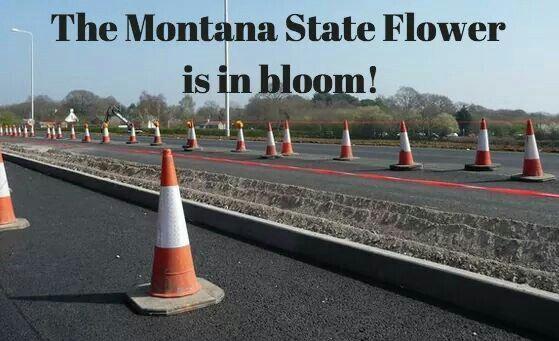 Truth Montana State University Montana Weather Montana State