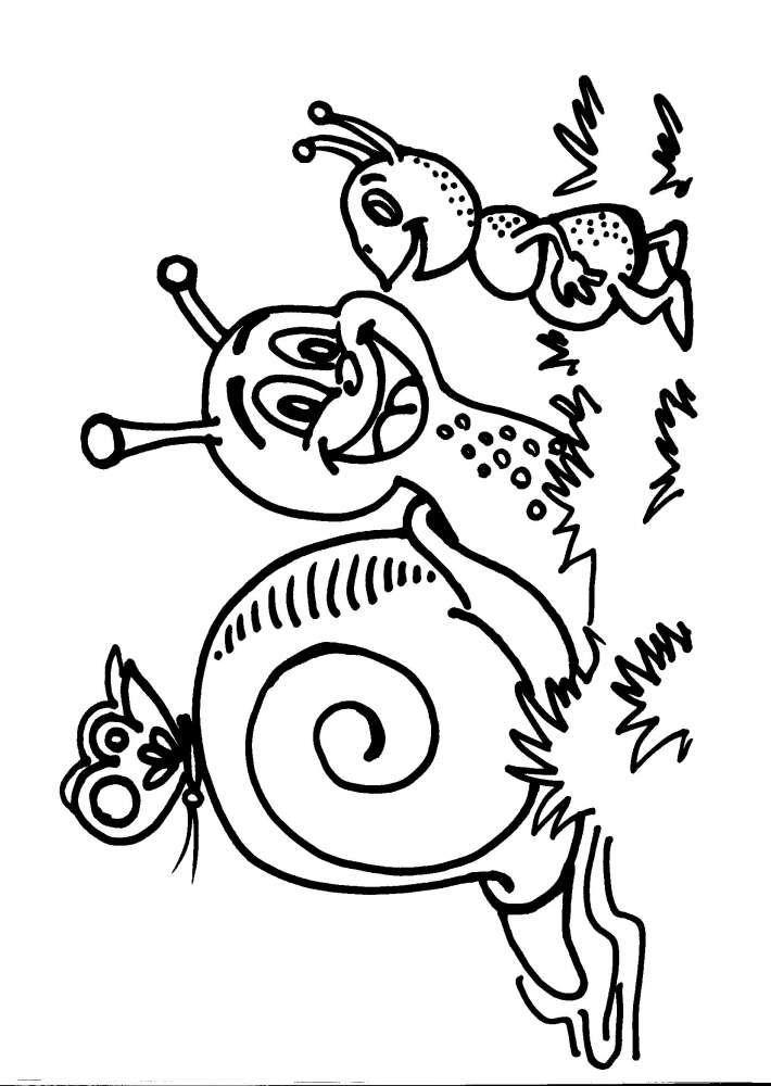 Disegni da colorare per bambini lumaca lumachina for Mobilia piccoli francavilla al mare