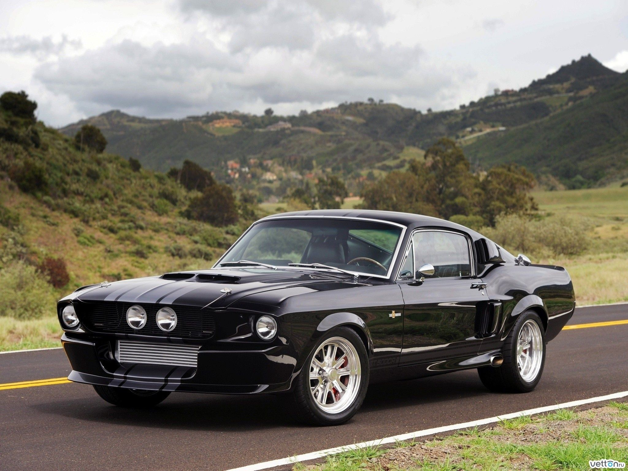 Ford Mustang Gt350 Black Aggressive Rear Vents Great Mask