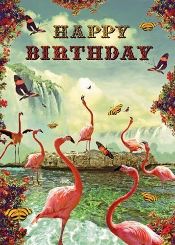 Happy Birthday Greetings Card - Flamingoes - by Max Hernn by Lip ...