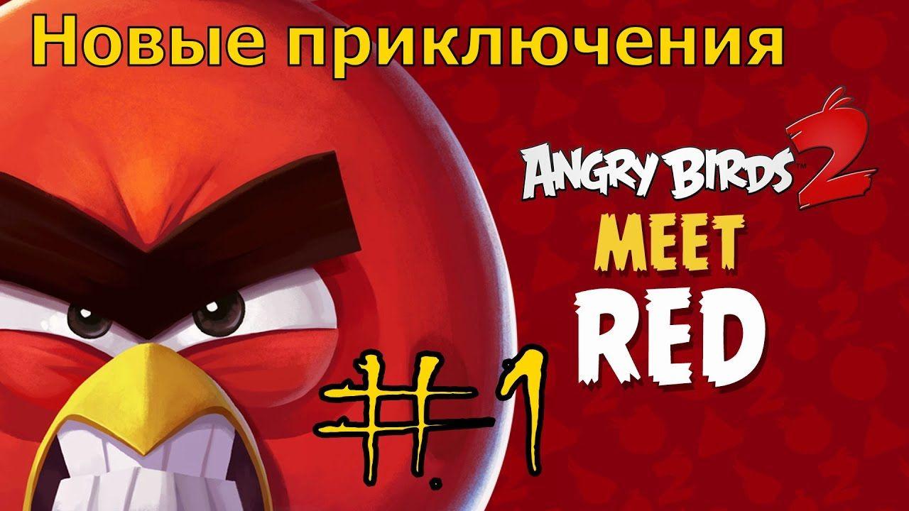Angry birds Начало нелегкого пути и море впечатлений от игры