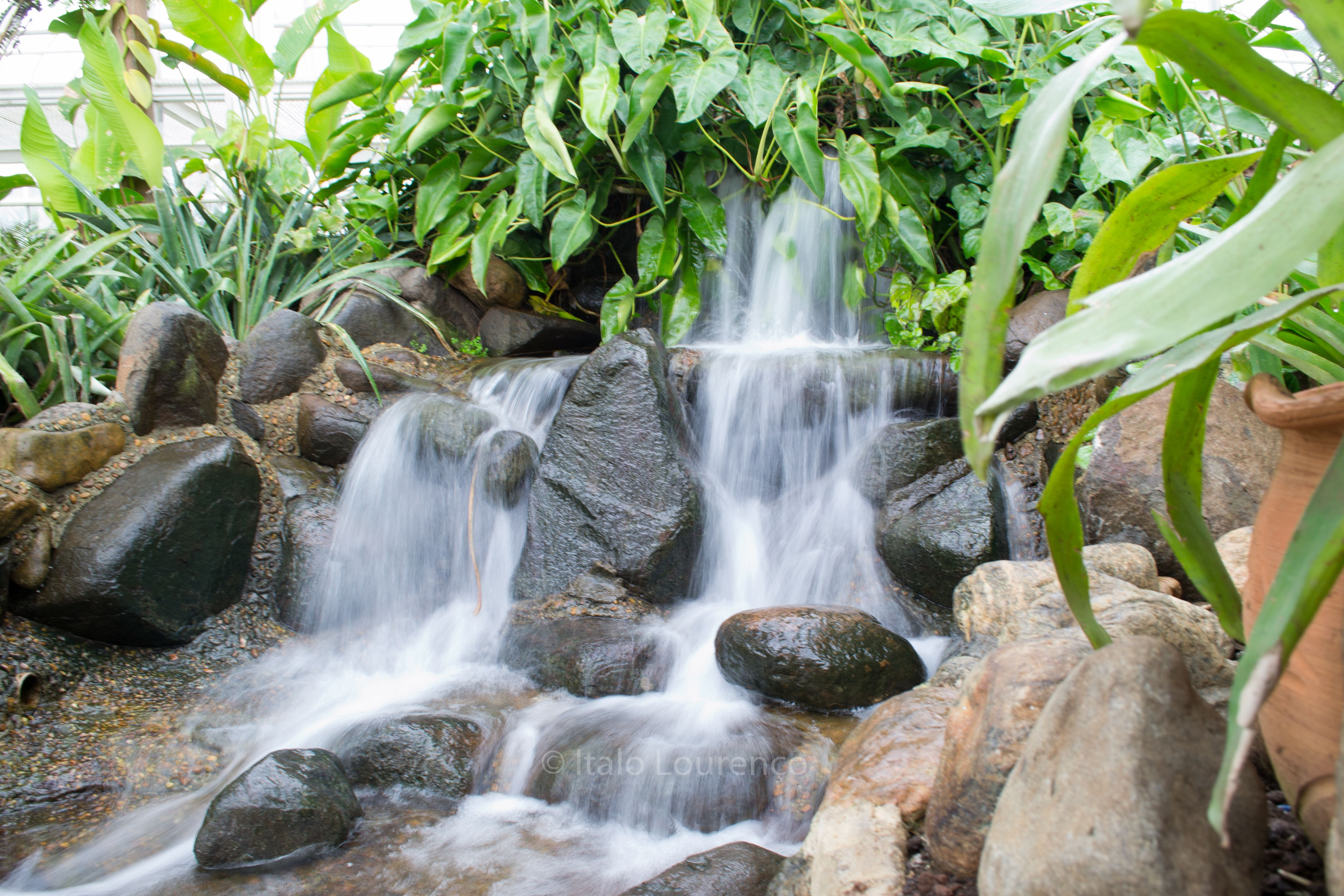 Fonte do jardim Botânico de Curitiba