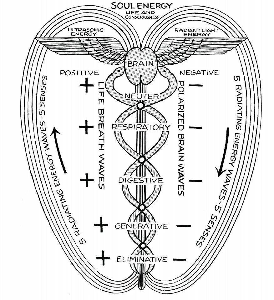 Metaphysical diagrams secret energy soul energy metaphysical metaphysical diagrams secret energy soul energy my spiritsacred symbolsancient buycottarizona Images