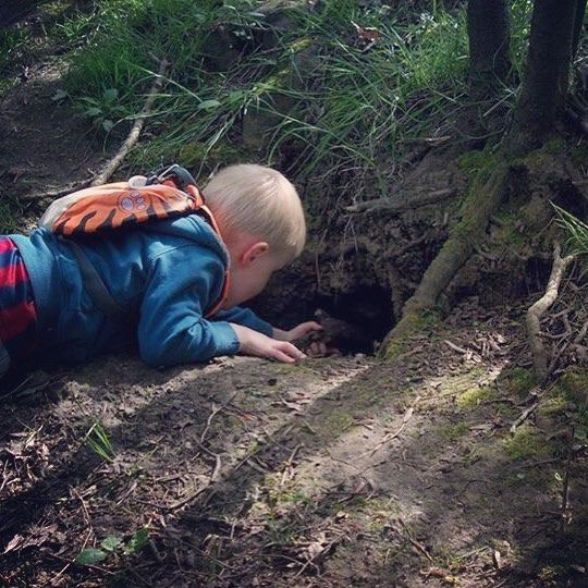 Looking for foxes  #kids #kid #instakids #child #children #childrenphoto #love #cute #young #sweet #little  #fun #family #play #happy #explorerkids #foxes #adventure #spring #walk #nature #green