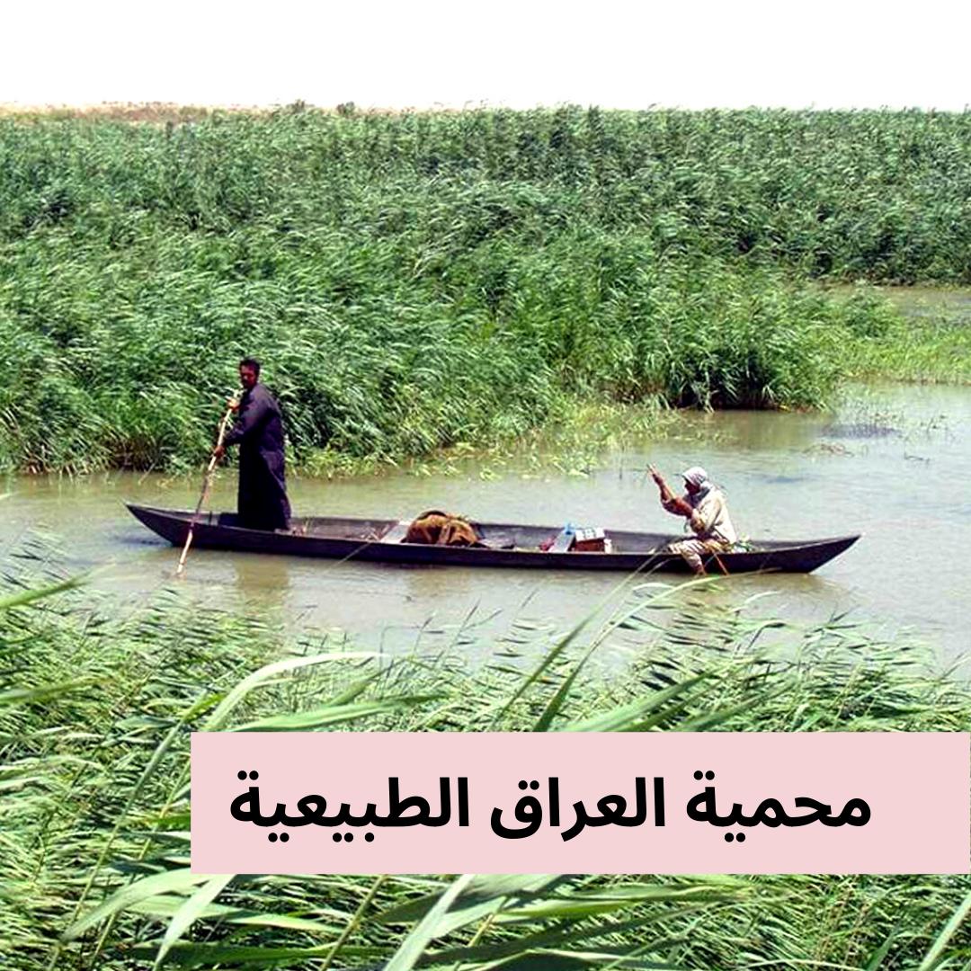 أهوار العراق هي مجموعة المسطحات المائية التي تغطي الأراضي المنخفضة الواقعة في جنوبي السهل الرسوبي العراقي للأهوار تأثير إيجابي على البيئة فهي تعتبر مصدر جي In 2021 Boat