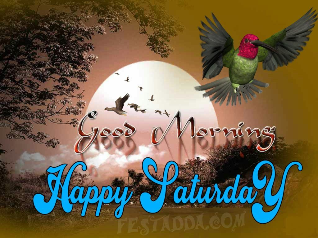 Good Morning Saturday Images And Quotes Full Hd Download For Whatsapp Status And Faceb Happy Saturday Images Good Morning Saturday Good Morning Saturday Images