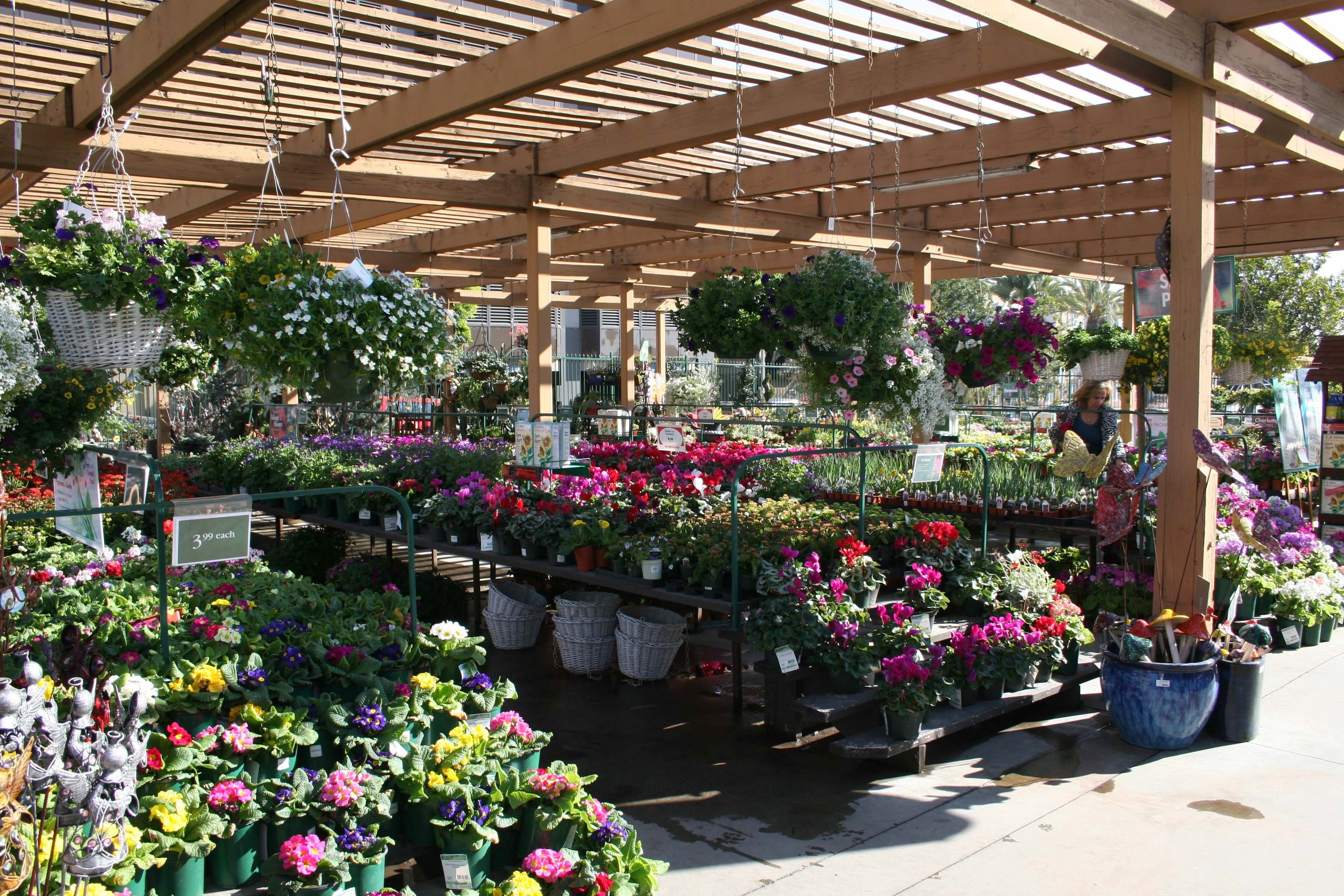 Armstrong Garden Centers Santa Monica Los Angeles Ca Awesome Center Coupon 6