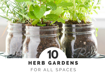 10 Herb Gardens for Every Space