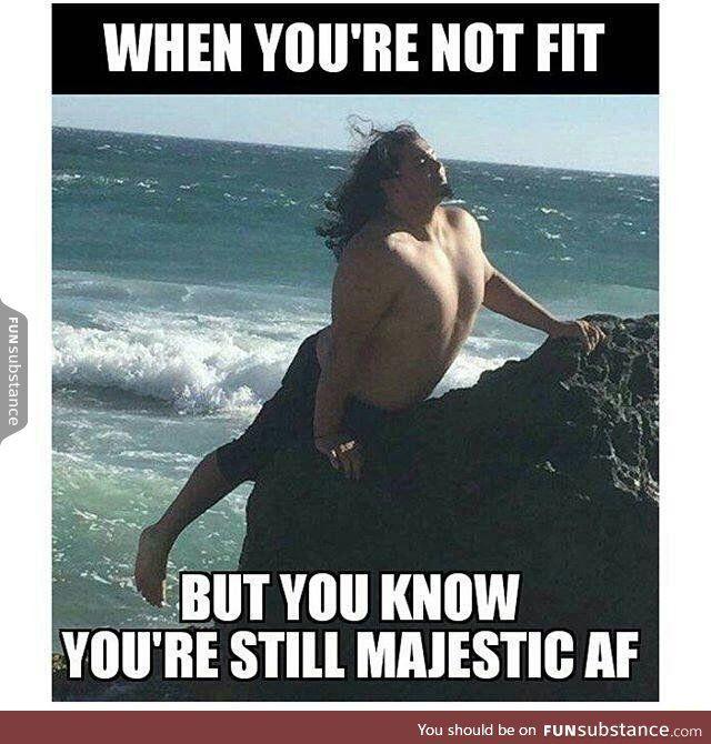 Unfit But Majestic Dark Humour Memes Dark Humor Funny Pictures