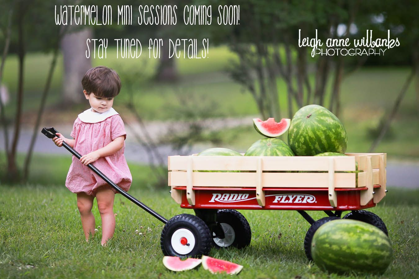 Watermelon Mini Sneak Peek Baton Rouge La Children And Family