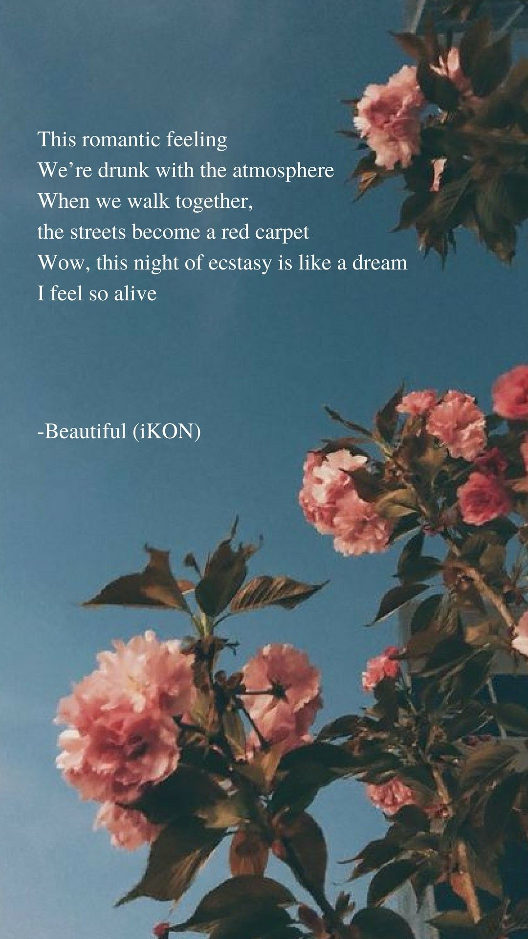 Beautiful By Ikon Lyrics Wallpaper Ikon Wallpaper Ikon Songs Lyrics Aesthetic ikon lyrics wallpaper
