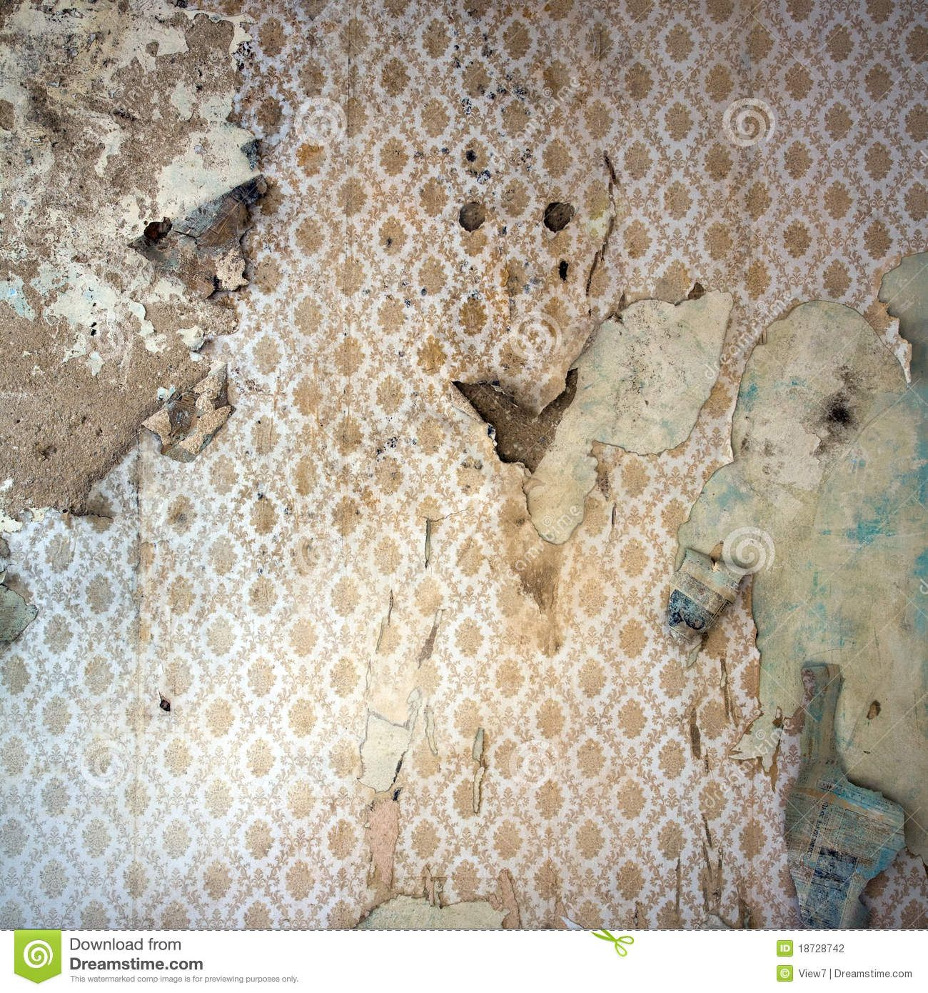 Peeling Wallpaper Damaged Wal Download From Over 65 Million