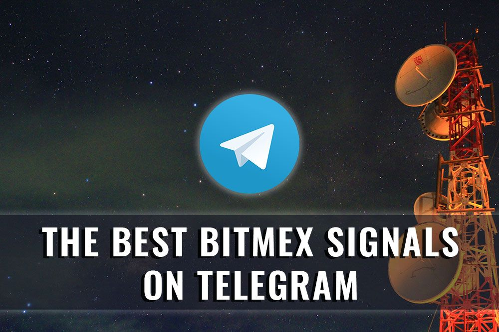 The Best Bitmex Signals On Telegram Best Crypto Good Things Best