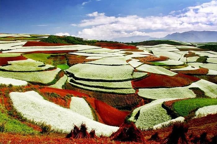 Campos China Paisajes Lugares Y China