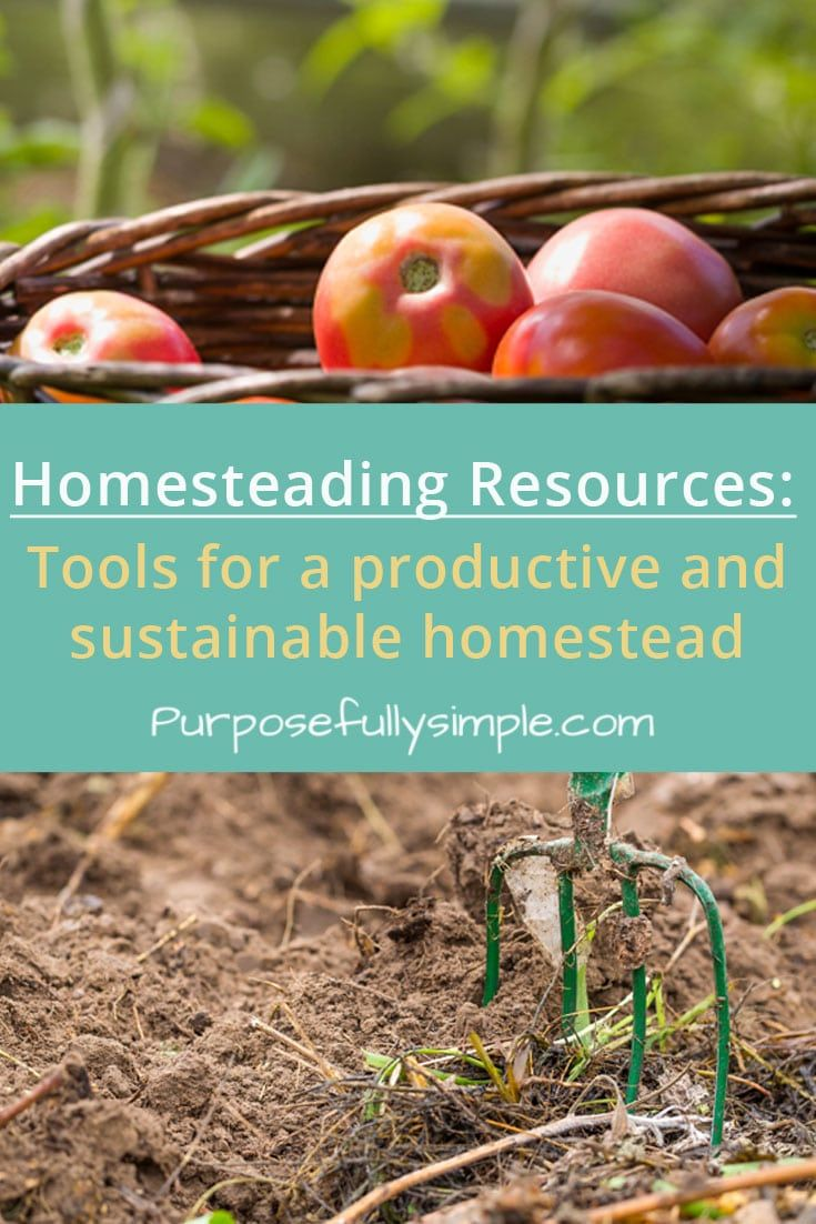 These tools and resources that will help you succeed on your homestead. Real food, gardening, livestock, skill building, etc. #homesteading #simpleliving
