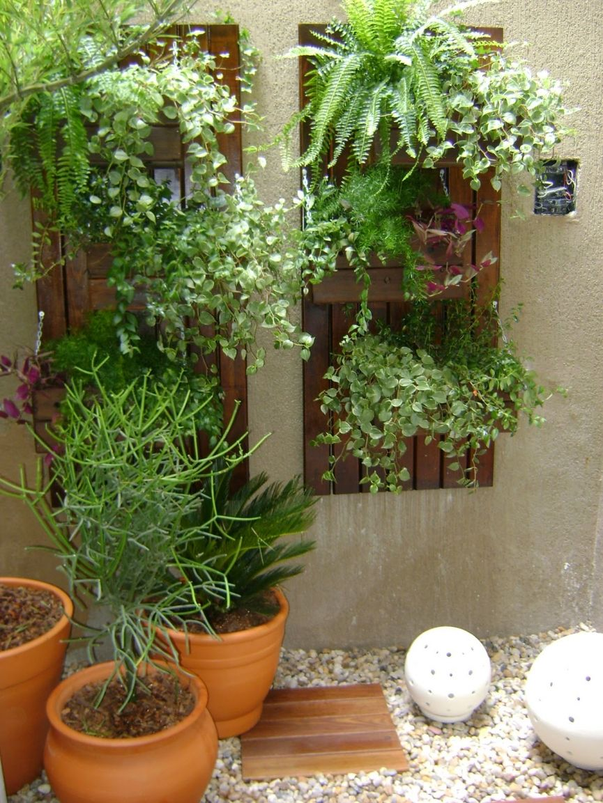 Jardim de inverno pequeno e simples com cascata paletes e for Jardines pequenos simples