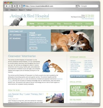Website Design For The Animal Bird Hospital Of Clearwater A Veterinary Hospital In Clearwater Flor Website Design Portfolio Website Design Portfolio Design