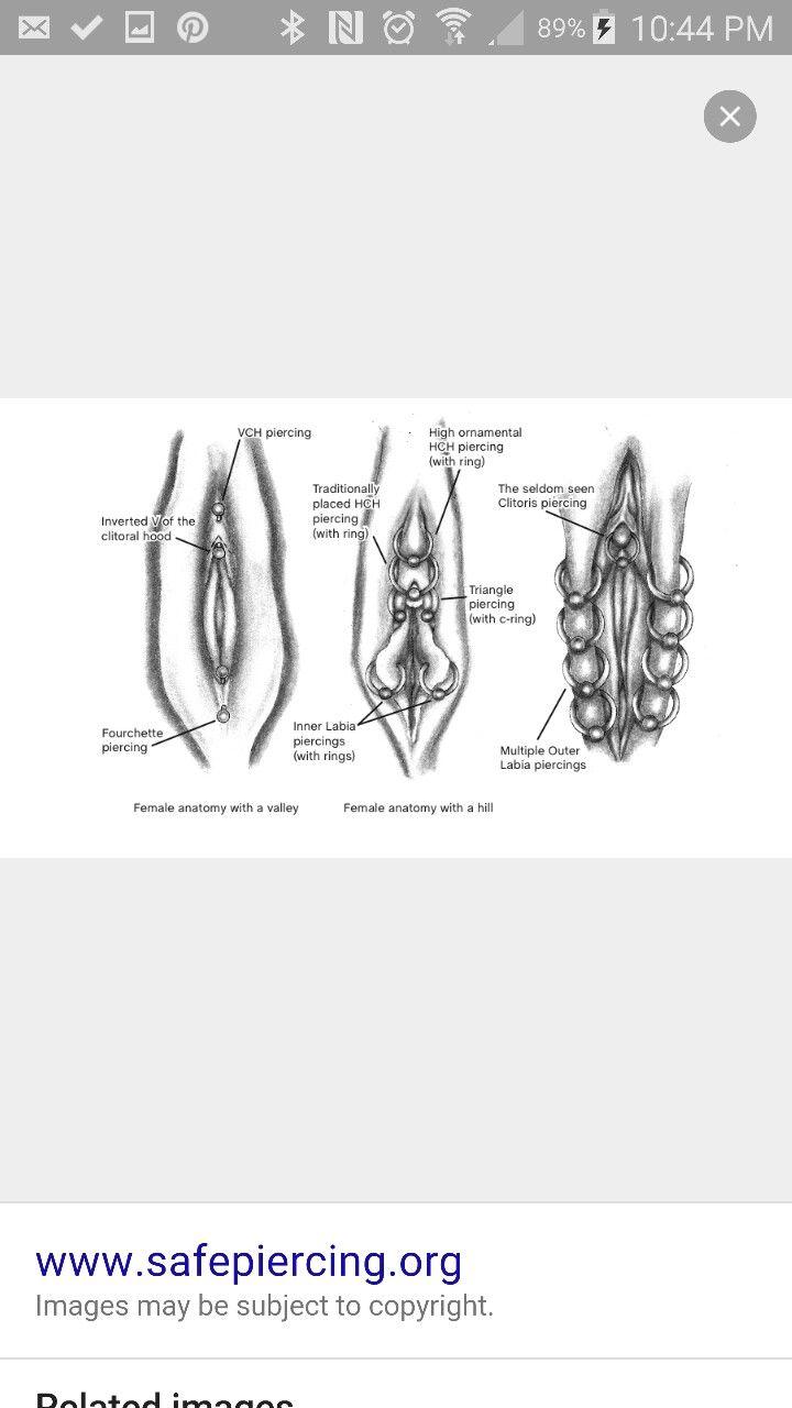Pin By Ute Odom On Piercings Tattoos Piercings