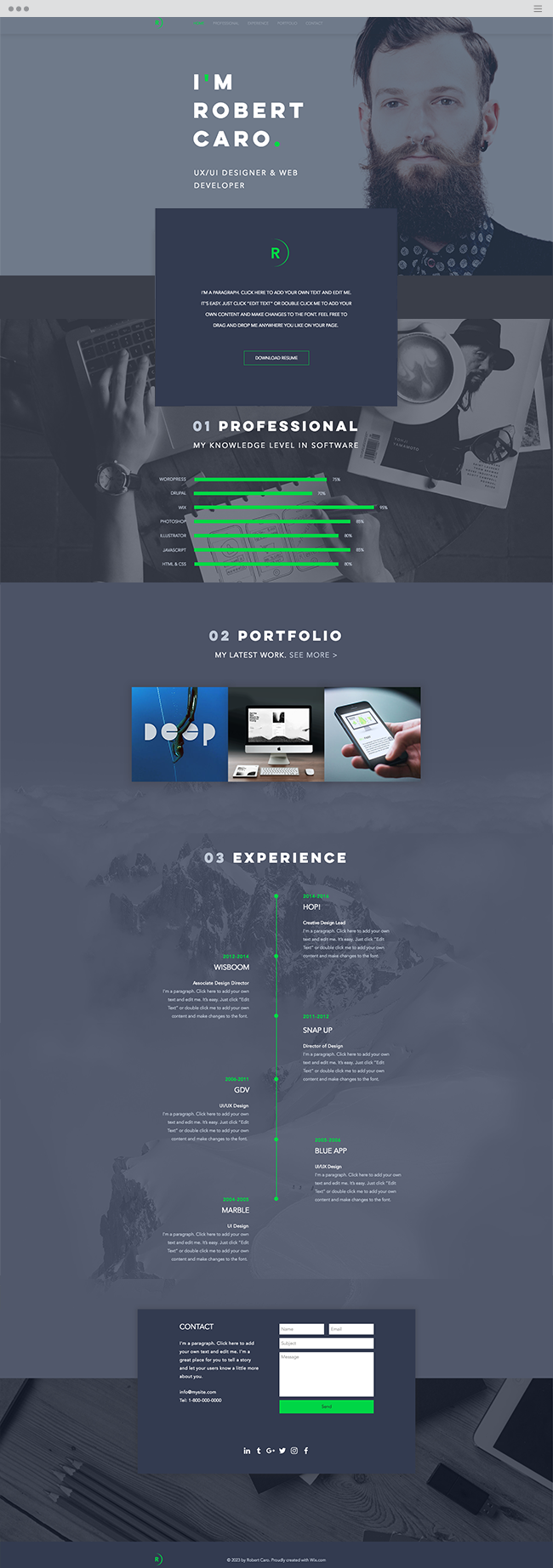 UxUi Designer Resume Website Template  Wix Website Templates