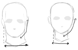 Difference Between Drawing Male And Female Anime Manga Heads Faces How To Draw Step By Step Drawing Tutorials Guy Drawing Female Anime Drawings