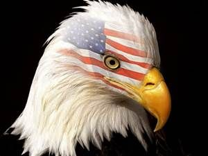 American Flag And Eagle Wallpaper In The Darkness There Is