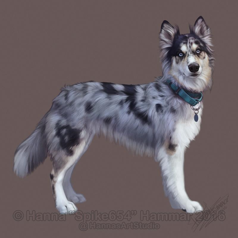 Sketchy Pet Portrait 20 by HannasArtStudio