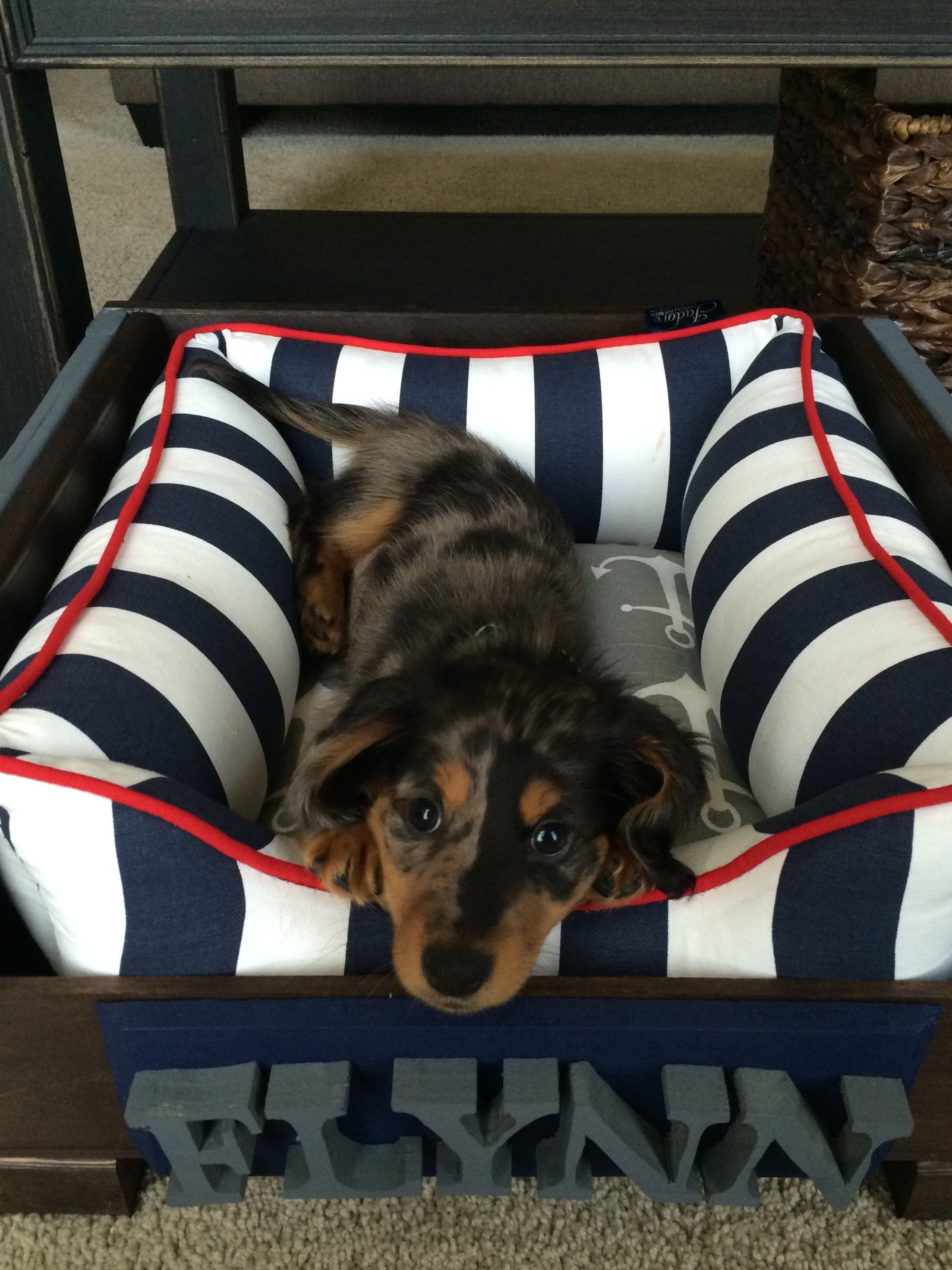Cuddle Pet Bed Custom Pet Bed Pet Beds Dog Bed