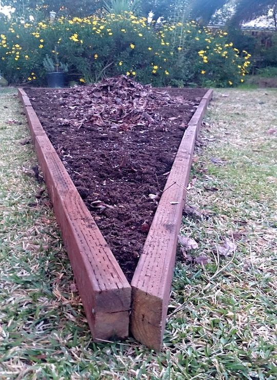 How to Start a Backyard Vegetable Garden | Backyard ...