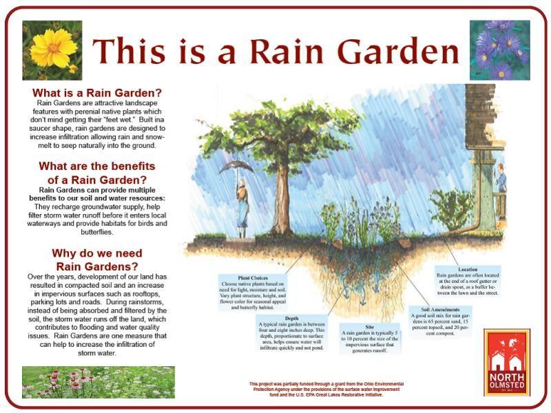 rain garden rain and projects on pinterest : rain garden diagram - findchart.co
