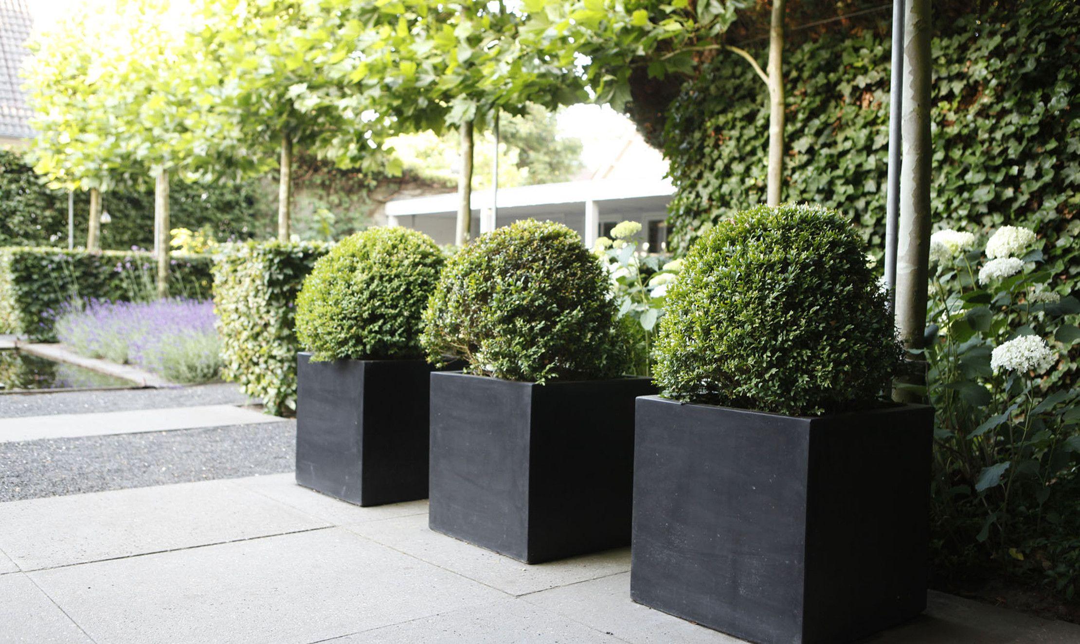 Afbeeldingsresultaat voor plantenbakken buiten