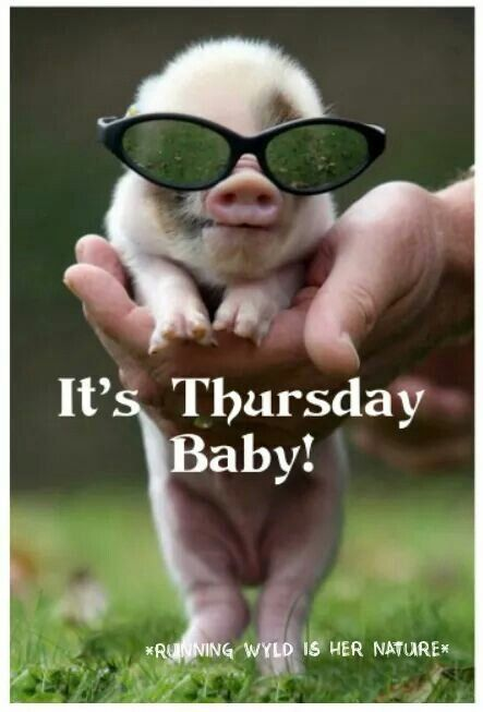 Its Thursday Baby Have A Great Day Xx Thursday Days Of The