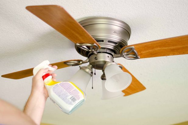 How to keep your ceiling fans dust free ceiling fan ceilings cleaning ceiling fans mozeypictures Image collections