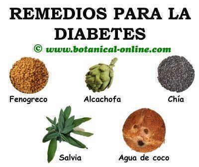 Plantas para la diabetes remedios naturales consejos de salud sa de rem dios y comidas - Meteorismo remedios ...