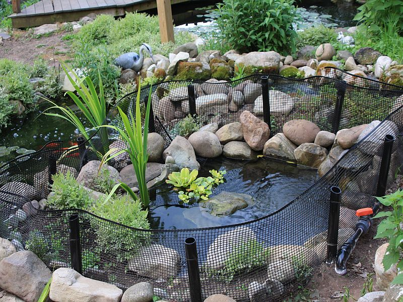 Outdoor turtle pond i 39 d love to get my guys out of the for Outdoor fish ponds for sale