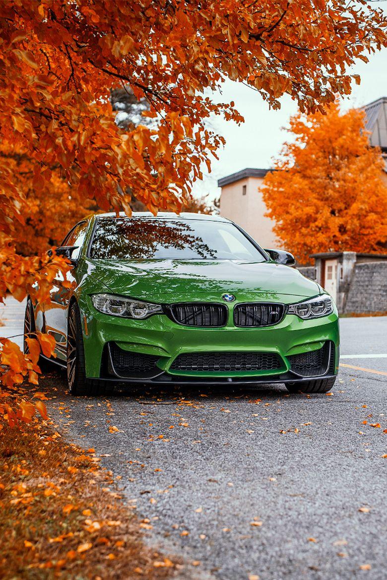 BMW M4 – Herbst Wallpaper   addicted to motorsport