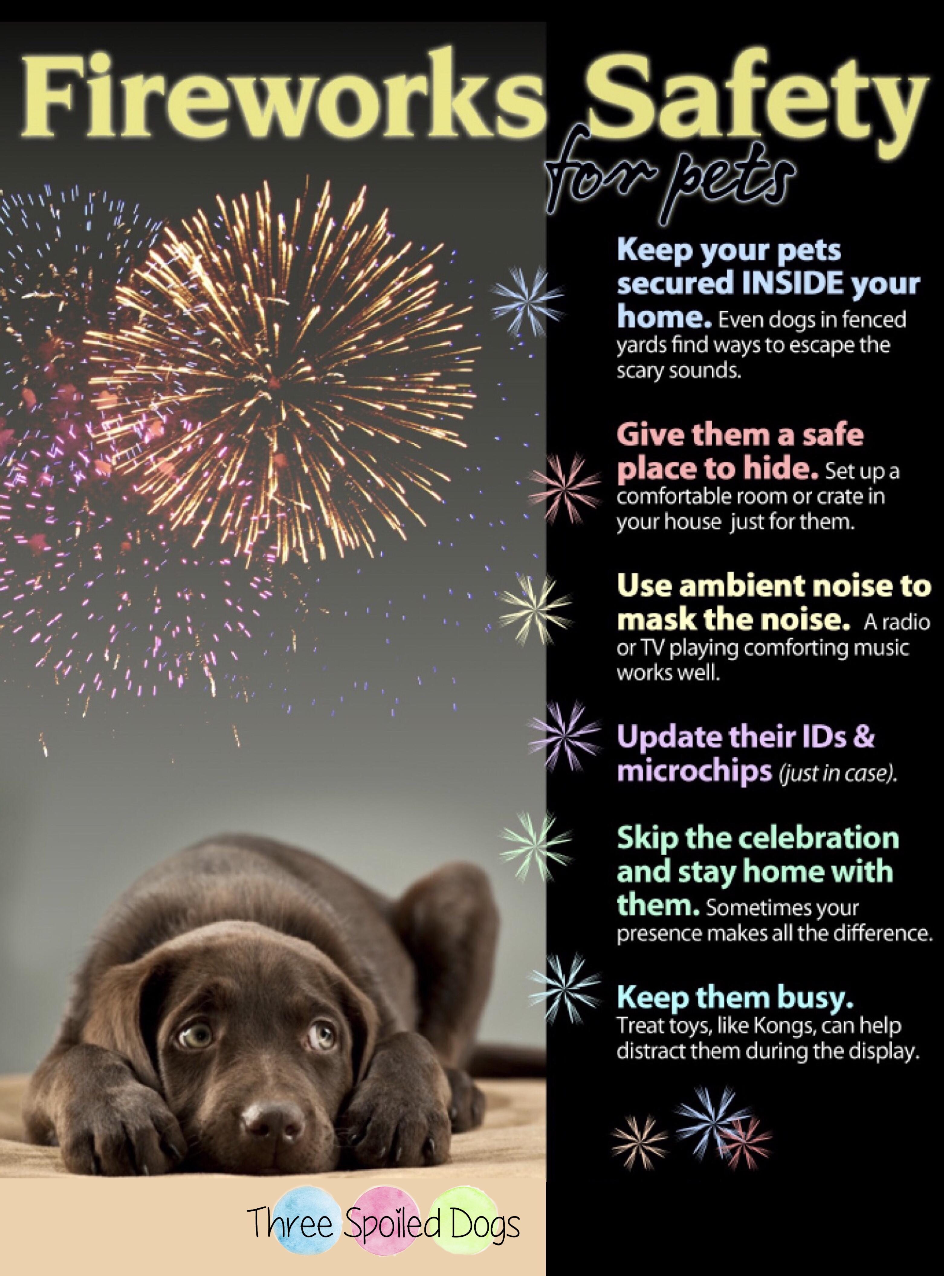 Fireworks Safety For Pets Firework Safety Dogs And Fireworks Pet Hacks