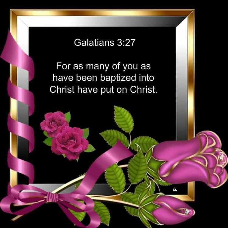 Galatians KJV For As Many Of You Have Been Baptized Into Christ Put On