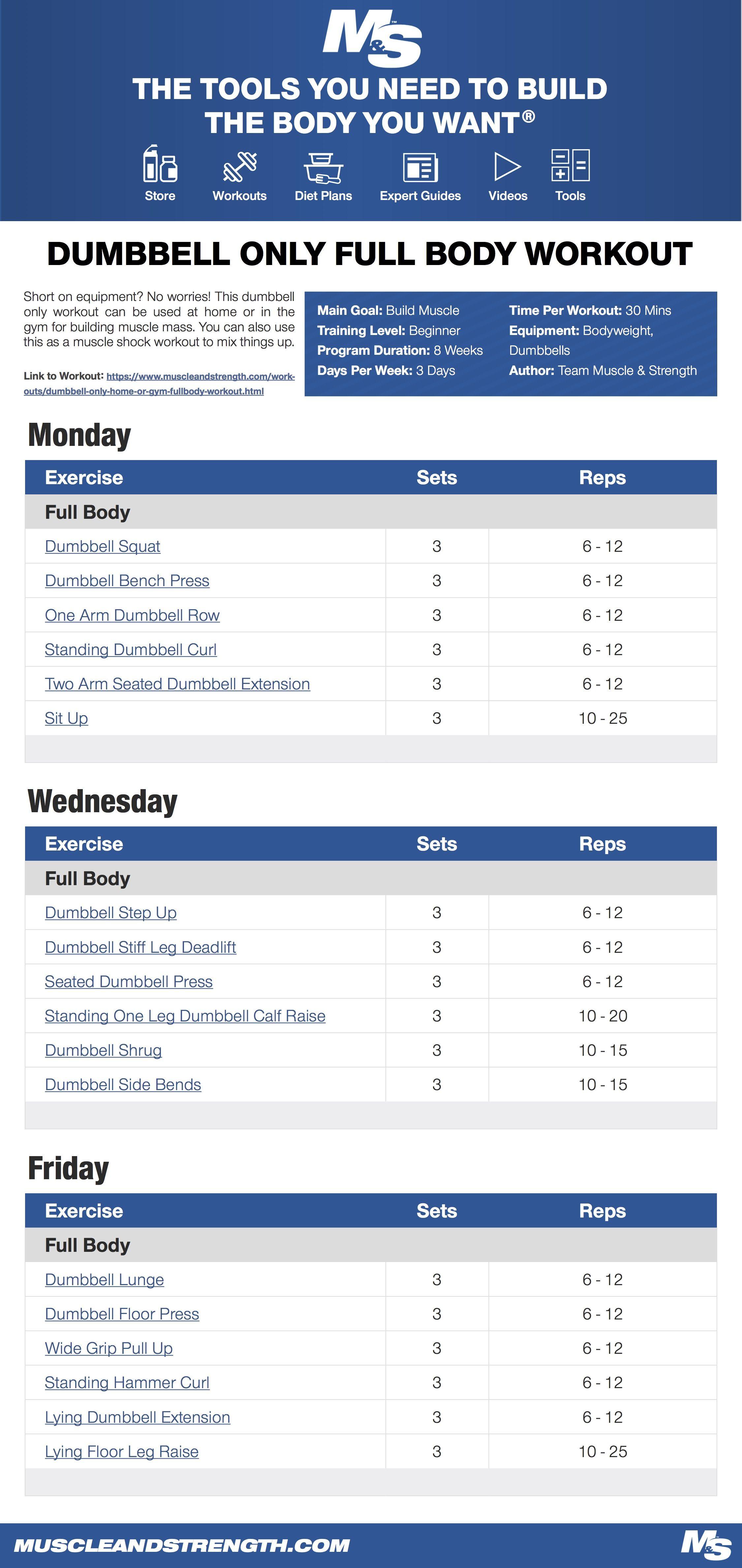 Dumbbell Workout Plan Pdf : dumbbell, workout, Dumbbell, Workout, Workout,, Weekly