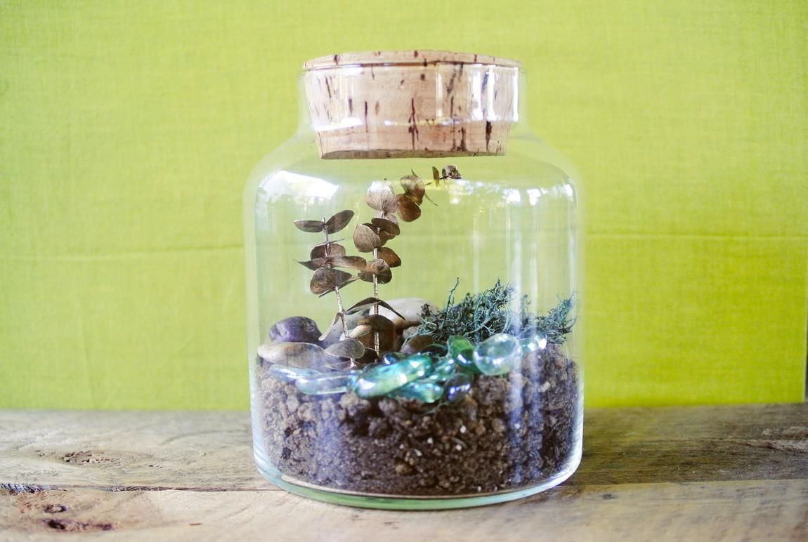 DIY faux terrarium that will survive any black thumb!