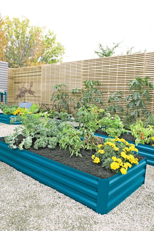 Raised Ve able Garden Kits New Zealand Design Nz Soil