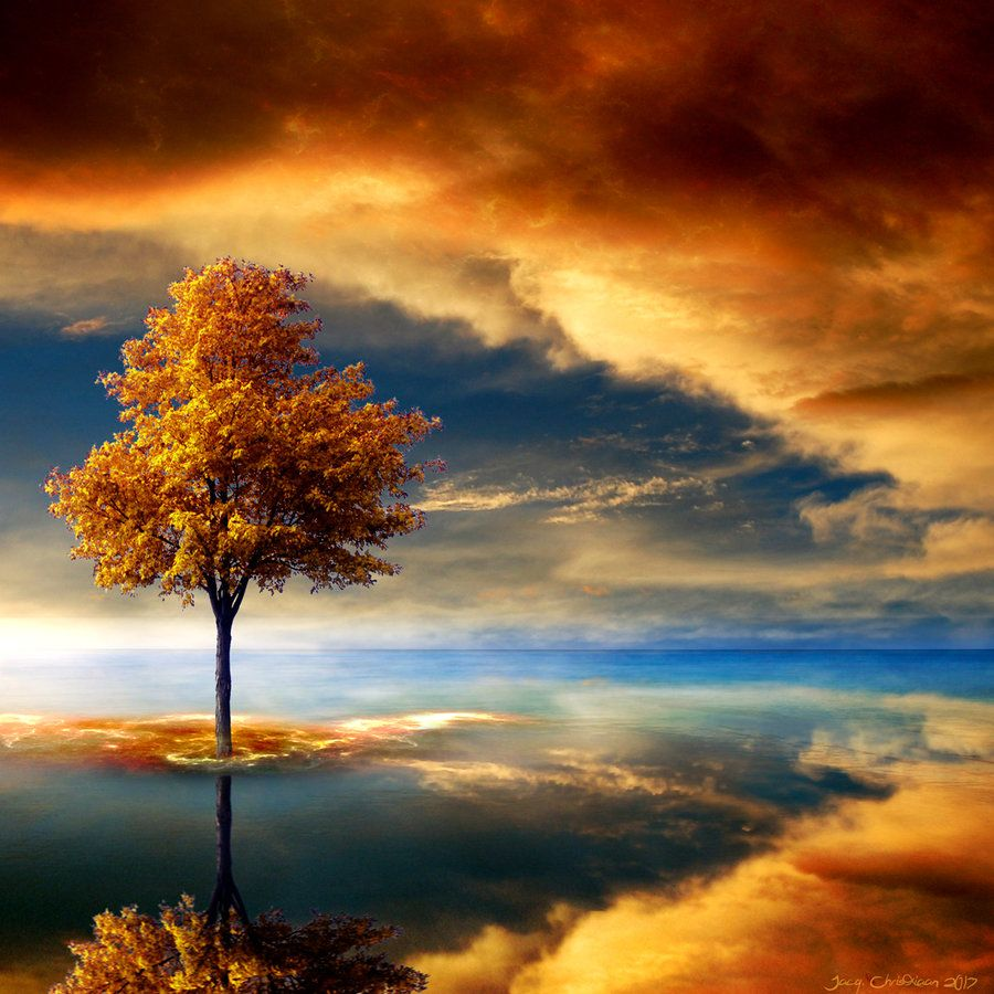 Autumn Dream by JacqChristiaan.deviantart.com on @deviantART