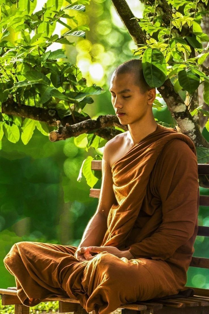 Black Swan • (With images)   Monk meditation, Buddhism ...