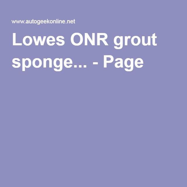 Autogeek Onr Aqua Sponge Grout Lowes Proline Pg3