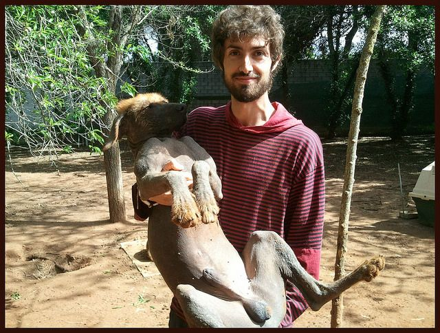 Dani, coordinador de los #voluntarios y Mechas, en La Candela, #Spain http://protectoralacandela.org/voluntarios-del-primer-fin-de-semana-de-abril/