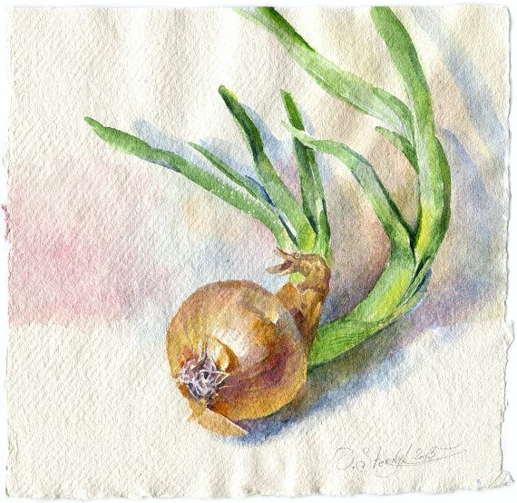 Watercolor Vegetable Painting Green Onion Painting By Olgasternyk