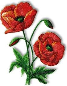 Advanced Embroidery Designs - Picotee Oriental Poppy.