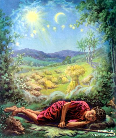 josephs_dreams_sun_moon_stars_sheaves_of_wheat.jpg (400×477) | Joseph dreams, Bible pictures, Bible images